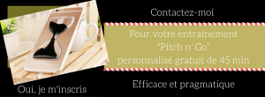 Pitch' n' Go - Humain Digital