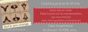 Marketing de Soi 2.0 Corinne Blanc-Faugère